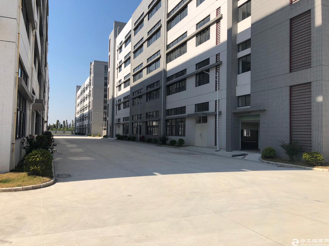 凤岗镇最新出工业园1-2楼