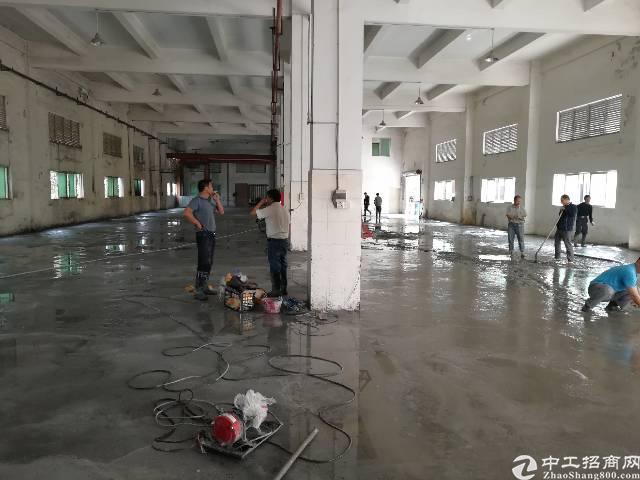 观澜福民新出一楼1500平方层高5.5米