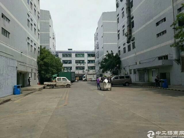 福永大洋田楼上整层1600平精装修厂房出租-图2