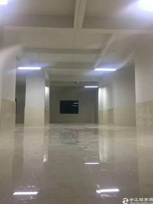 龙华鹊山路口新出原房东厂房一楼220平方