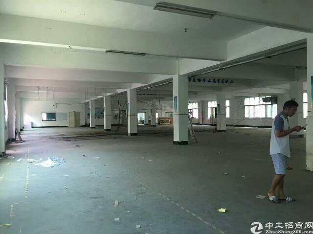 福永新出独门独院2-3楼各1600平方标准厂房