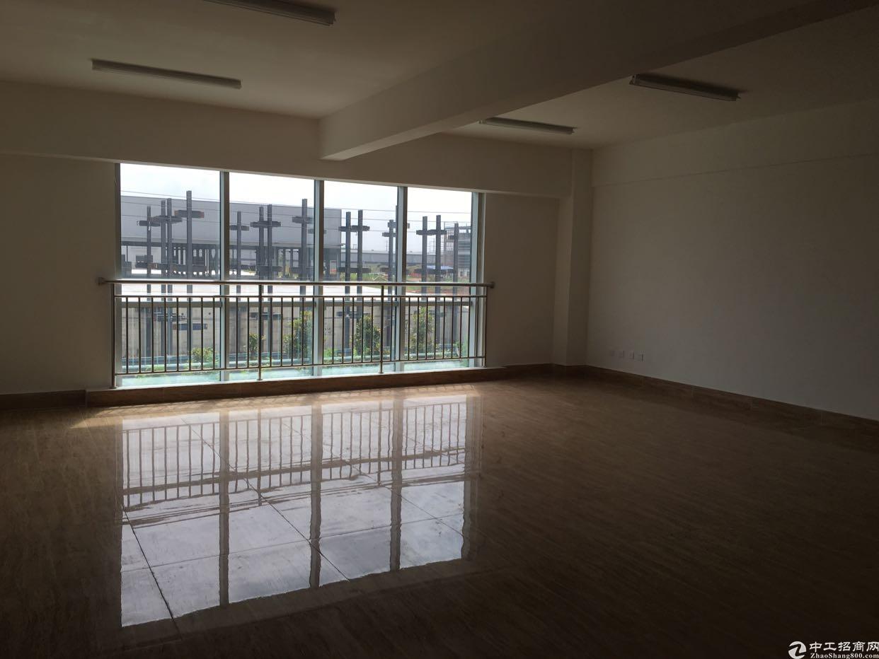 龙泉7000平米全新厂房-图6
