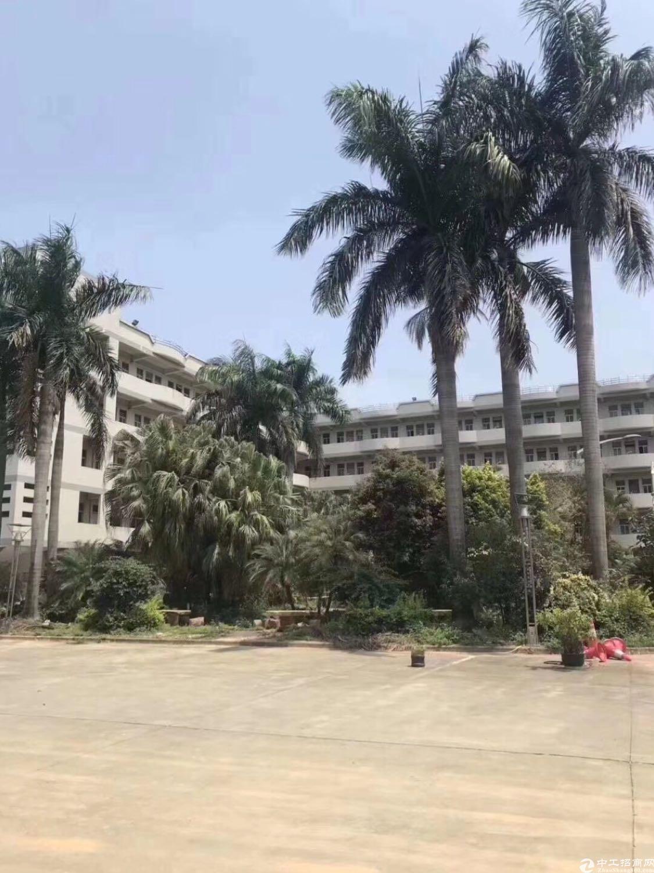惠州市惠城区三栋镇新出12,000平花园式独院标准厂房出租-图2