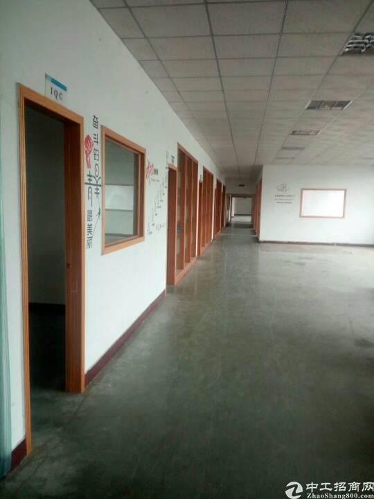 布吉丹竹头地铁站附近新带装修标准厂房