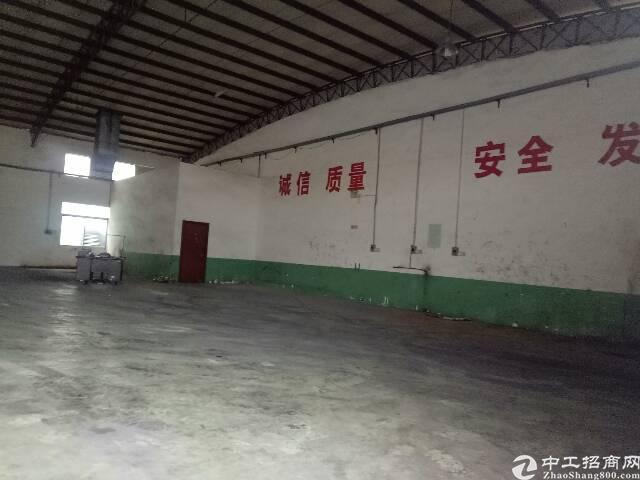 大朗原房东全新钢构厂房1580平方