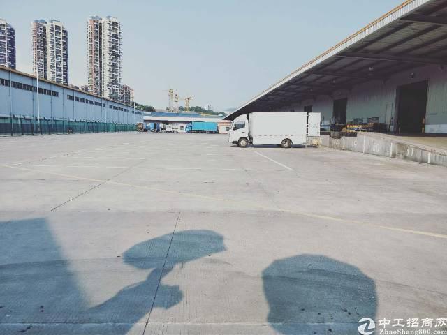 龙岗标准物流仓库4000平米,可分租2000平