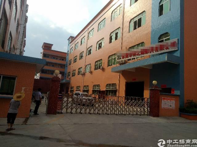 清溪镇荔横独栋九成新一楼6米高