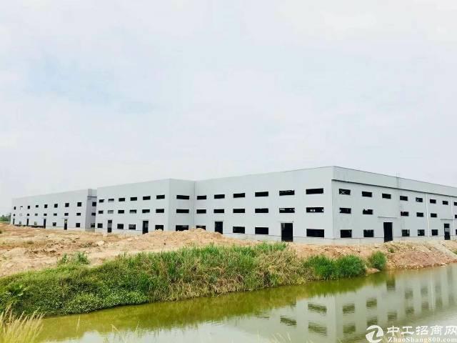 桥头镇新出独门独院滴水12米重工业单一层钢构厂房火爆招租