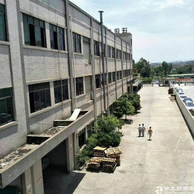 企石镇独院标准厂房6000平方出租