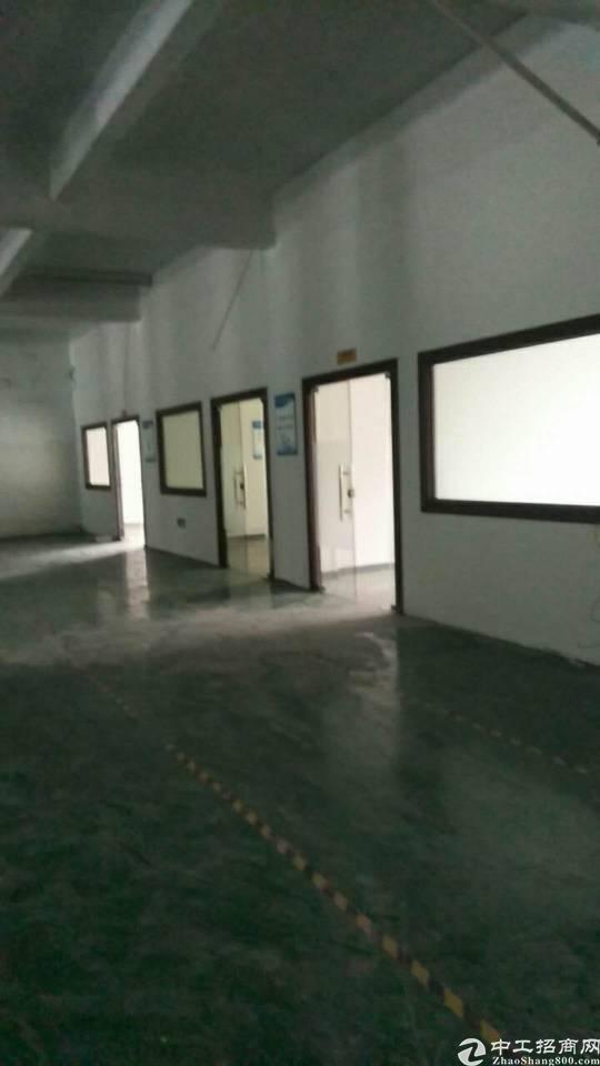 万江新出楼上700平带装修厂房招租