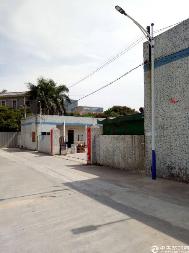 坪山区新出钢结构独院2000平招租