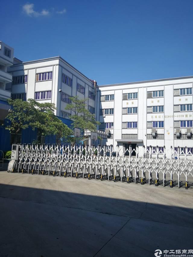 常平镇标准厂房约9000平方出租