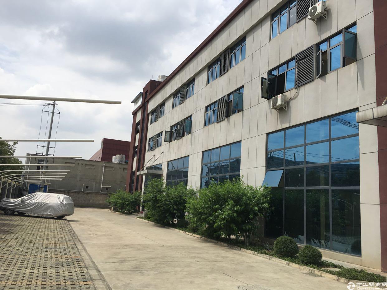 龙泉7000平米全新厂房