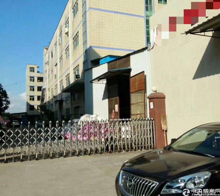 横岗 新出一楼1200平厂房 5米高 带峰谷平表 沙河路边