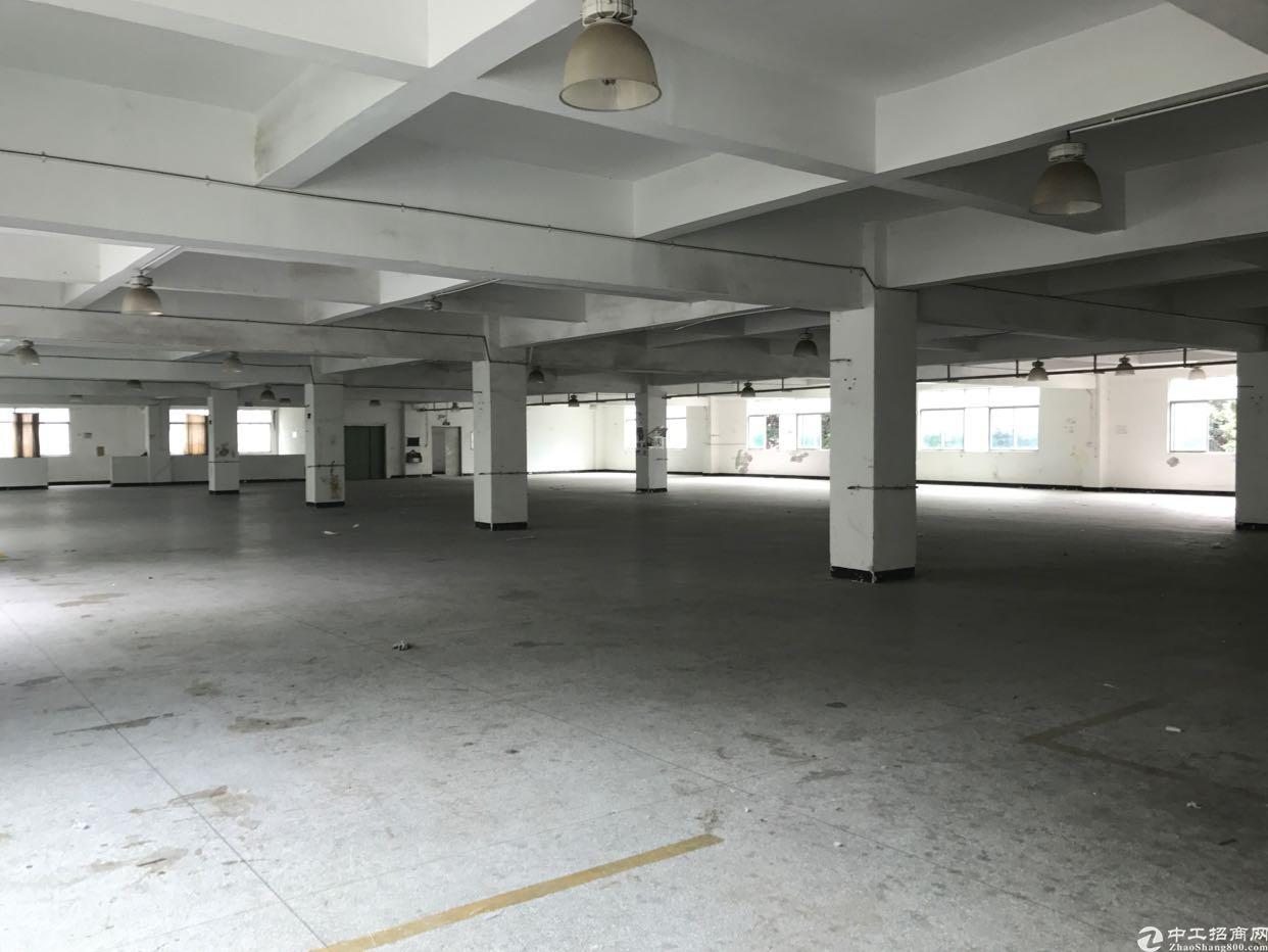 横岗 六约地铁口一楼1400平出租,空地超大-图5
