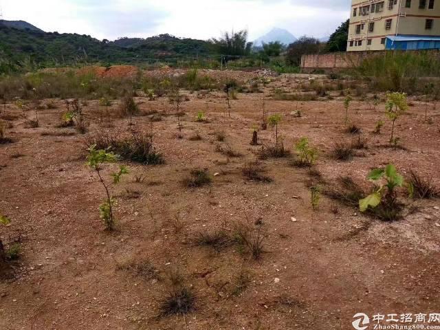 江为国有土地101亩出售-图4