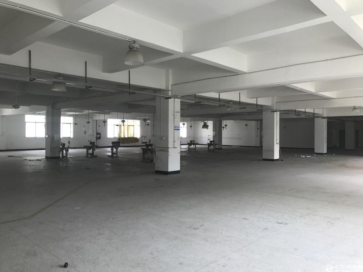 横岗 六约地铁口一楼1400平出租,空地超大-图4