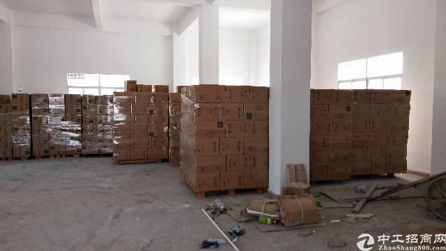 惠阳秋长白石标准厂房一楼400平米出租-图3