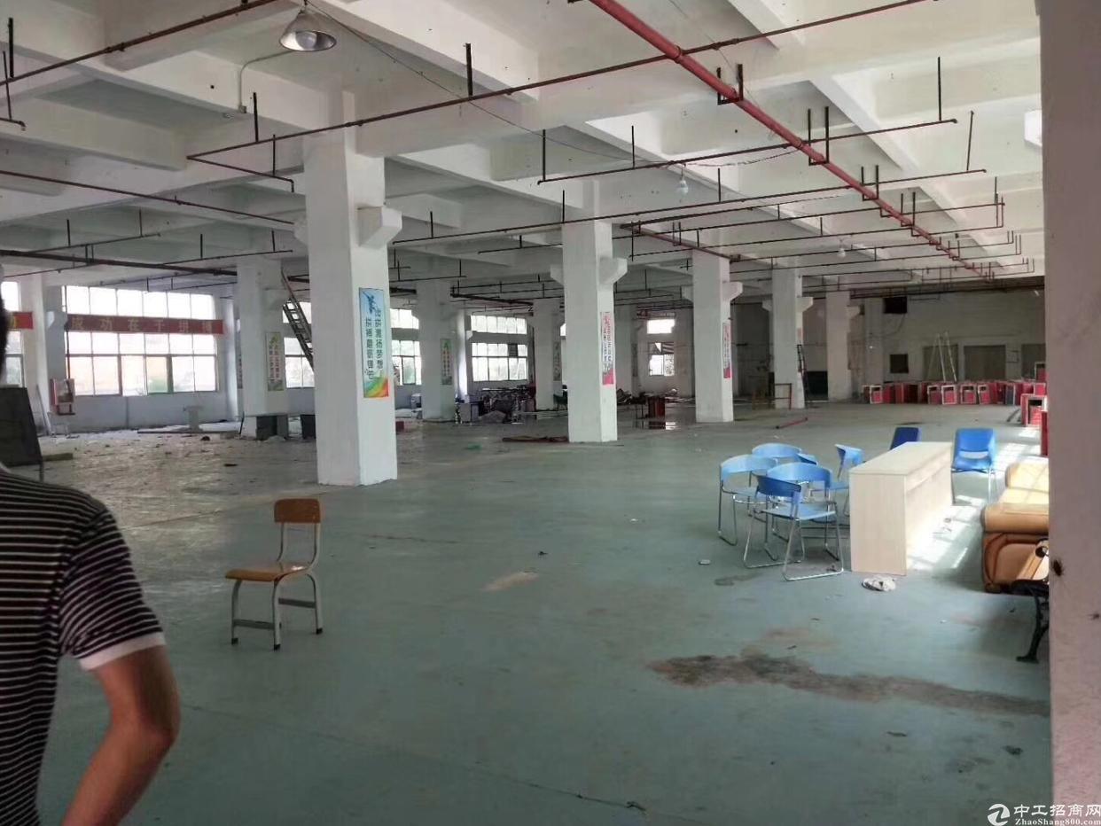新出科技产业园厂房出租,大小面积可租-图4
