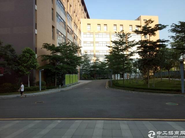 龙华大浪天虹附近精装办公室100-1600平方米招租