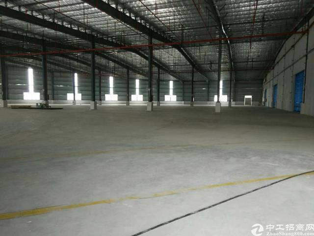 惠州标准独门独院单一层钢构厂房招租