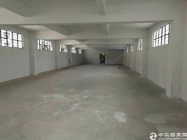 东莞凤岗金凤凰工业园楼上350平