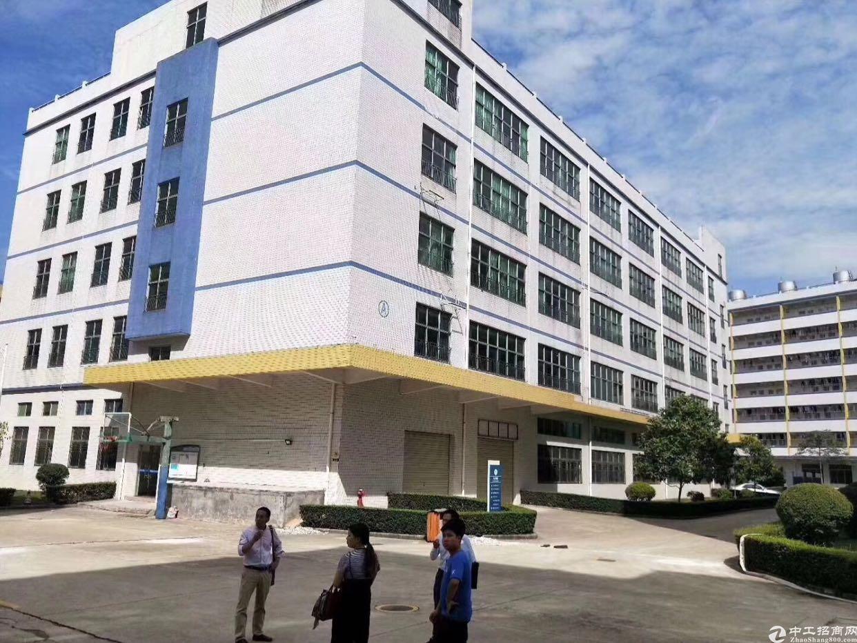 新出科技产业园厂房出租,大小面积可租-图2