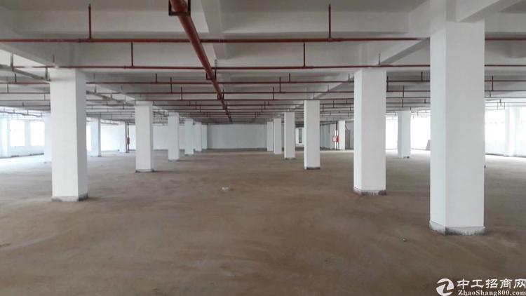 布吉新出一楼1700平方厂房招租