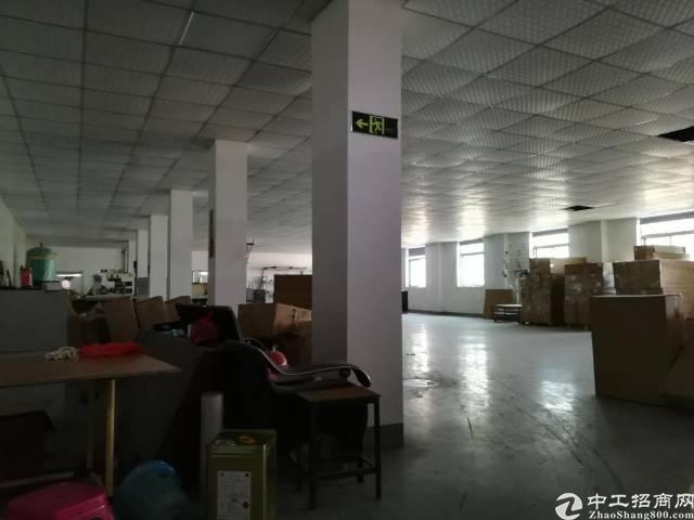 惠州惠城区惠环新出厂房900平带装修