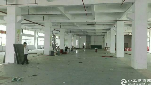 出租 光明新区大型工业区独栋厂房13000平-图2
