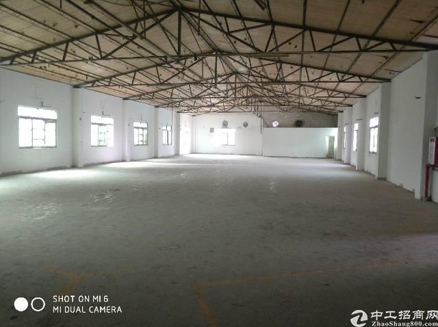 新出独门独院单一层厂房2000平米,打包价30000