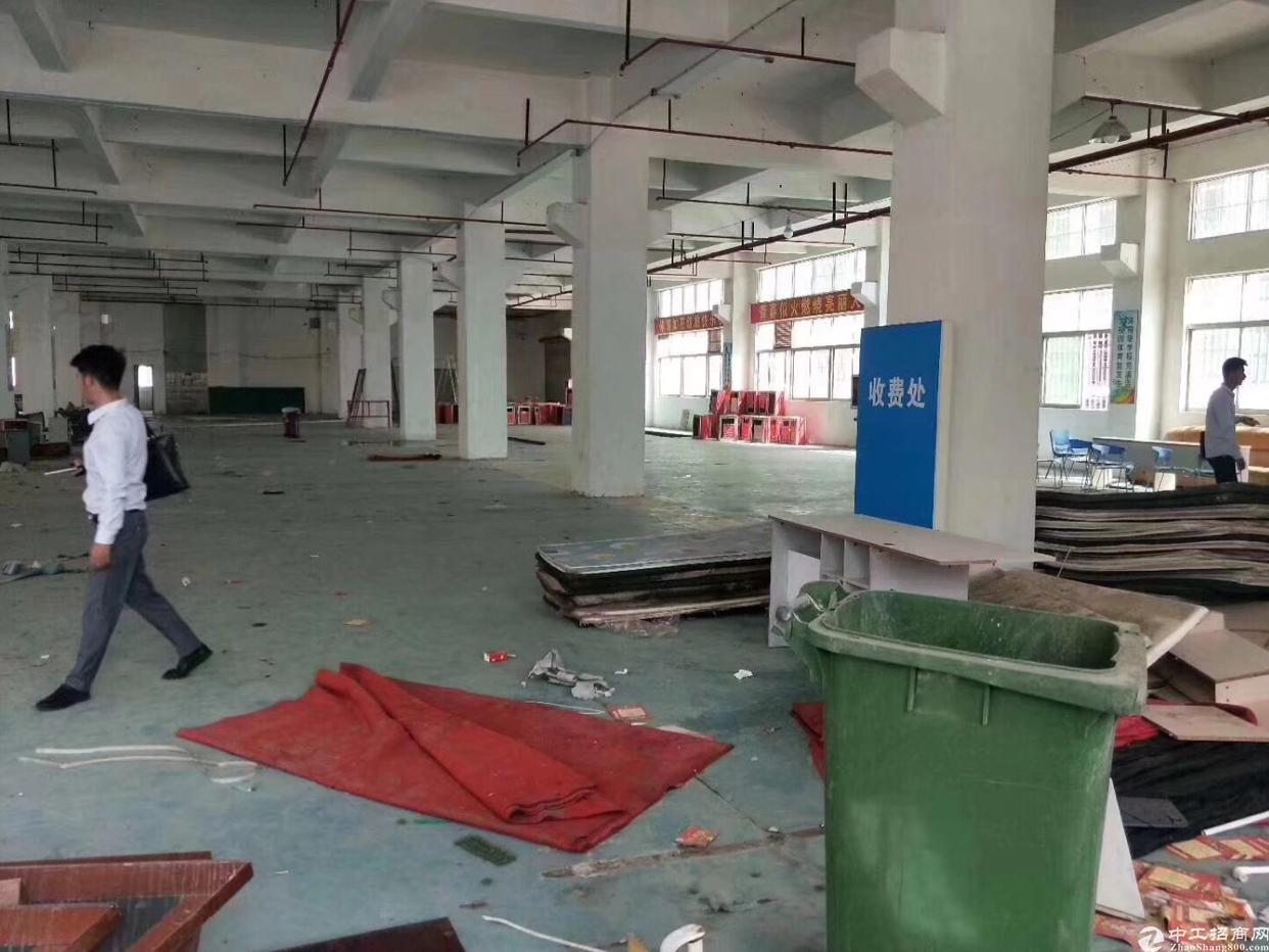 新出科技产业园厂房出租,大小面积可租-图5