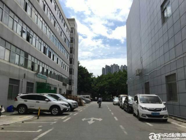 布吉丹竹头地铁站附近5000平米  红本厂房出租