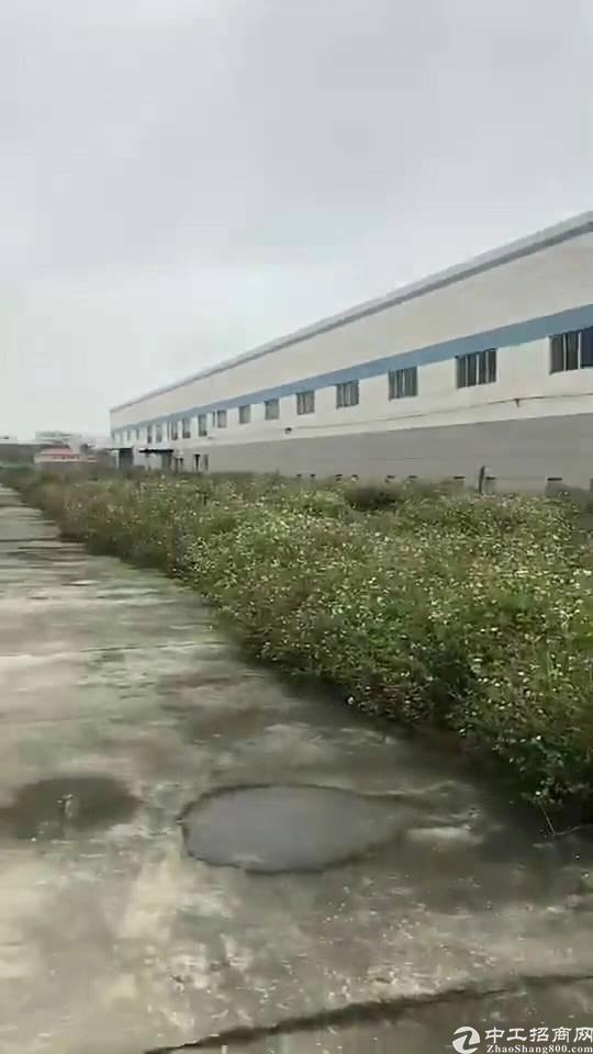 单一层滴水12米厂房火爆招租