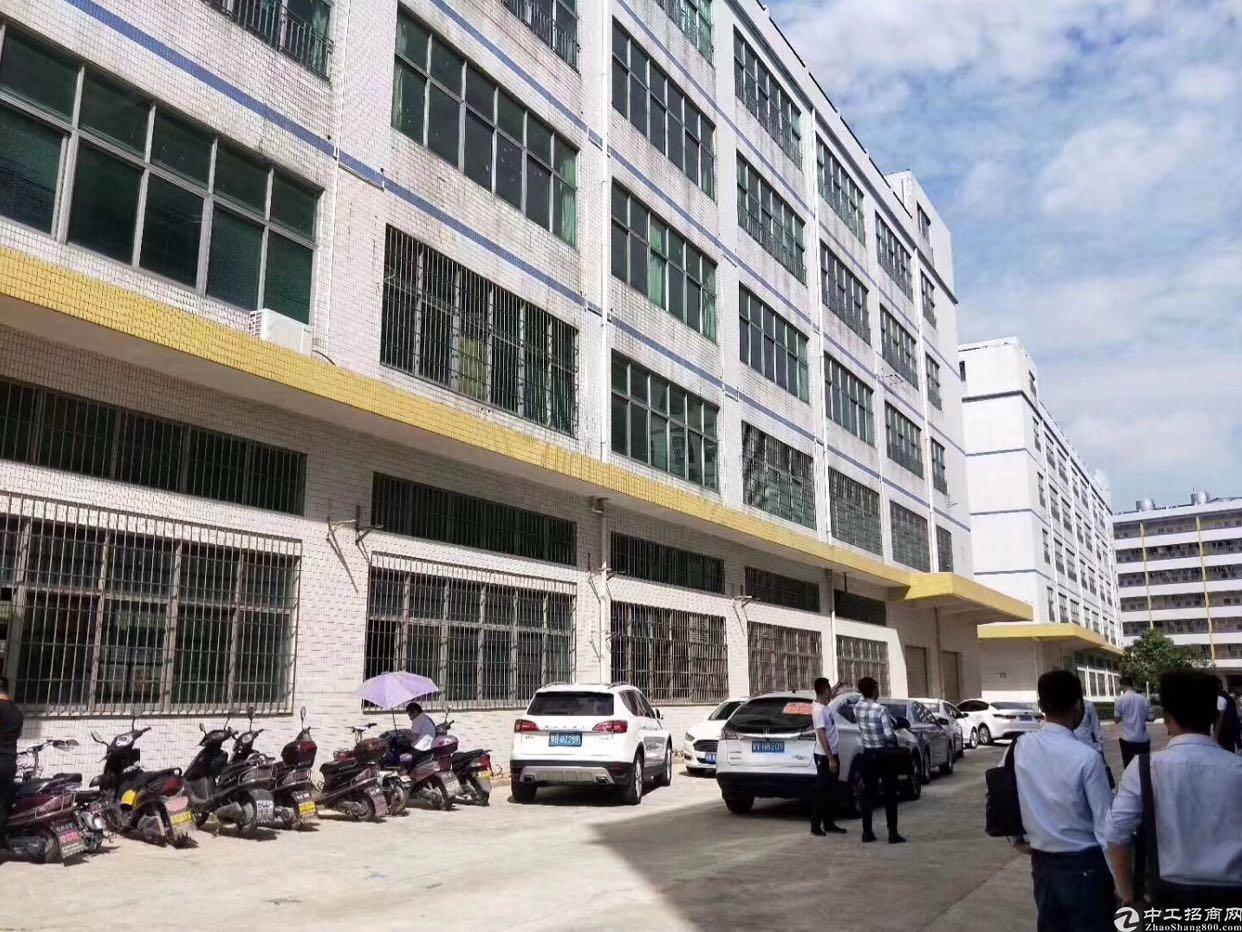 新出科技产业园厂房出租,大小面积可租-图6