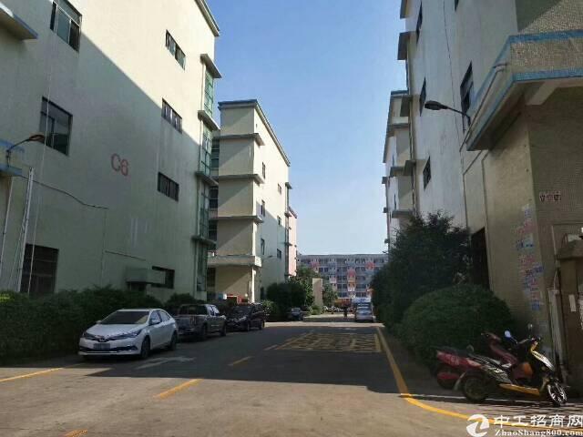 福永和平新出楼上原房东实际面积1300平精装修厂房