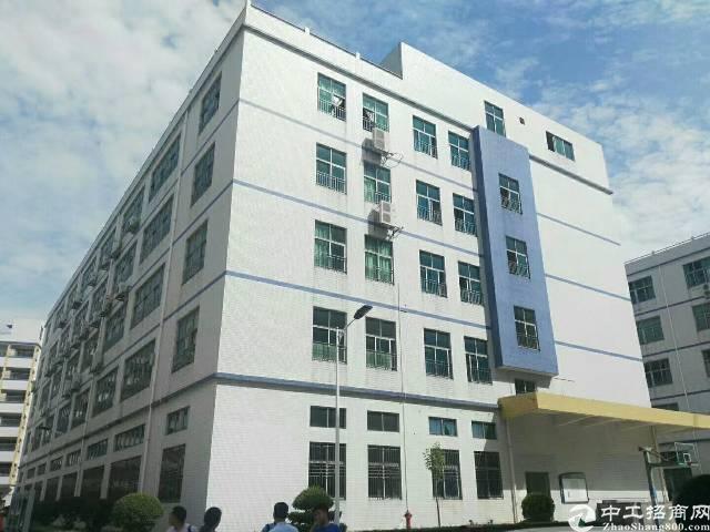 出租 光明新区大型工业区独栋厂房13000平-图3