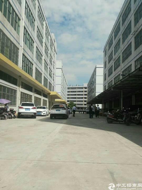 出租 光明新区大型工业区独栋厂房13000平-图4