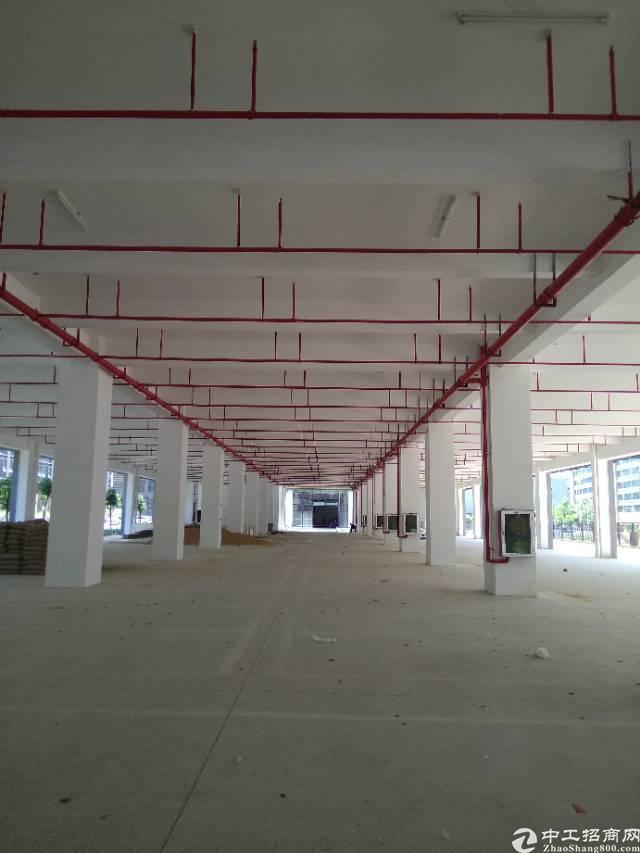 龙岗高新产业开发区全新红本150000平方厂房出租