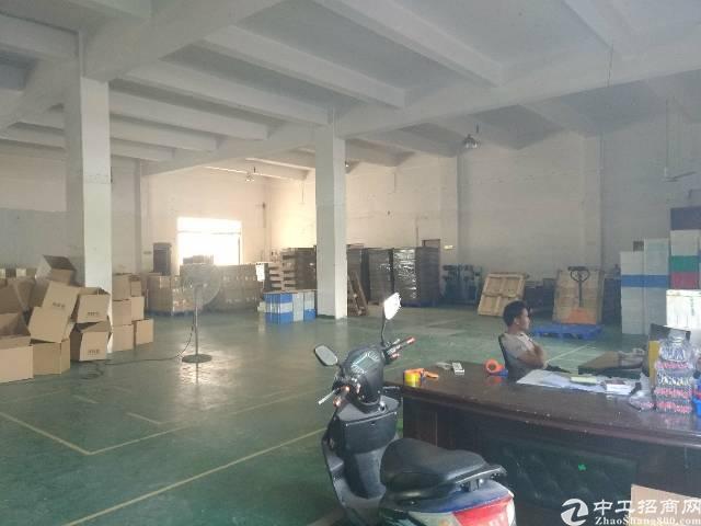 福永白石厦107国道边大园区新出一楼厂房850平方招租-图2