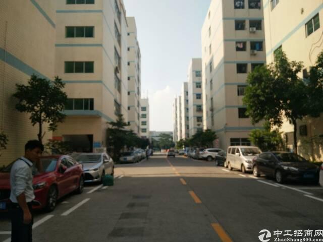 福永和平大型工业区一楼整层实际面积1300平厂房出租