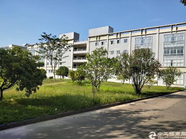 长安广深高速出口新出1600平米6米高厂房