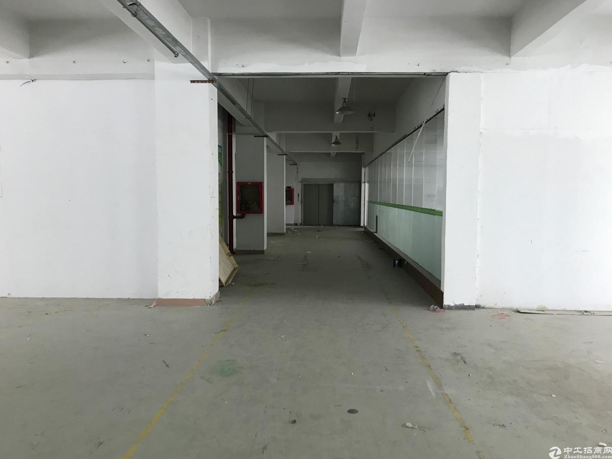 横岗 惠盐路二楼1130平带电梯厂房20块出租-图2