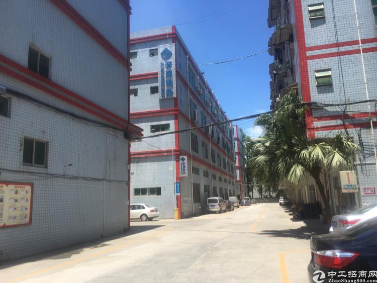 观澜主干道边上新出楼上红本厂房4800平方