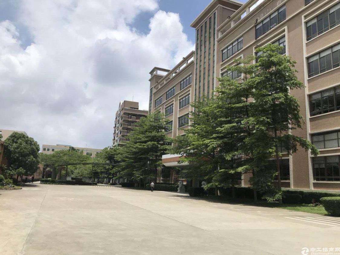 松岗新出楼上107国道独院2300平方可以做4s店-图2