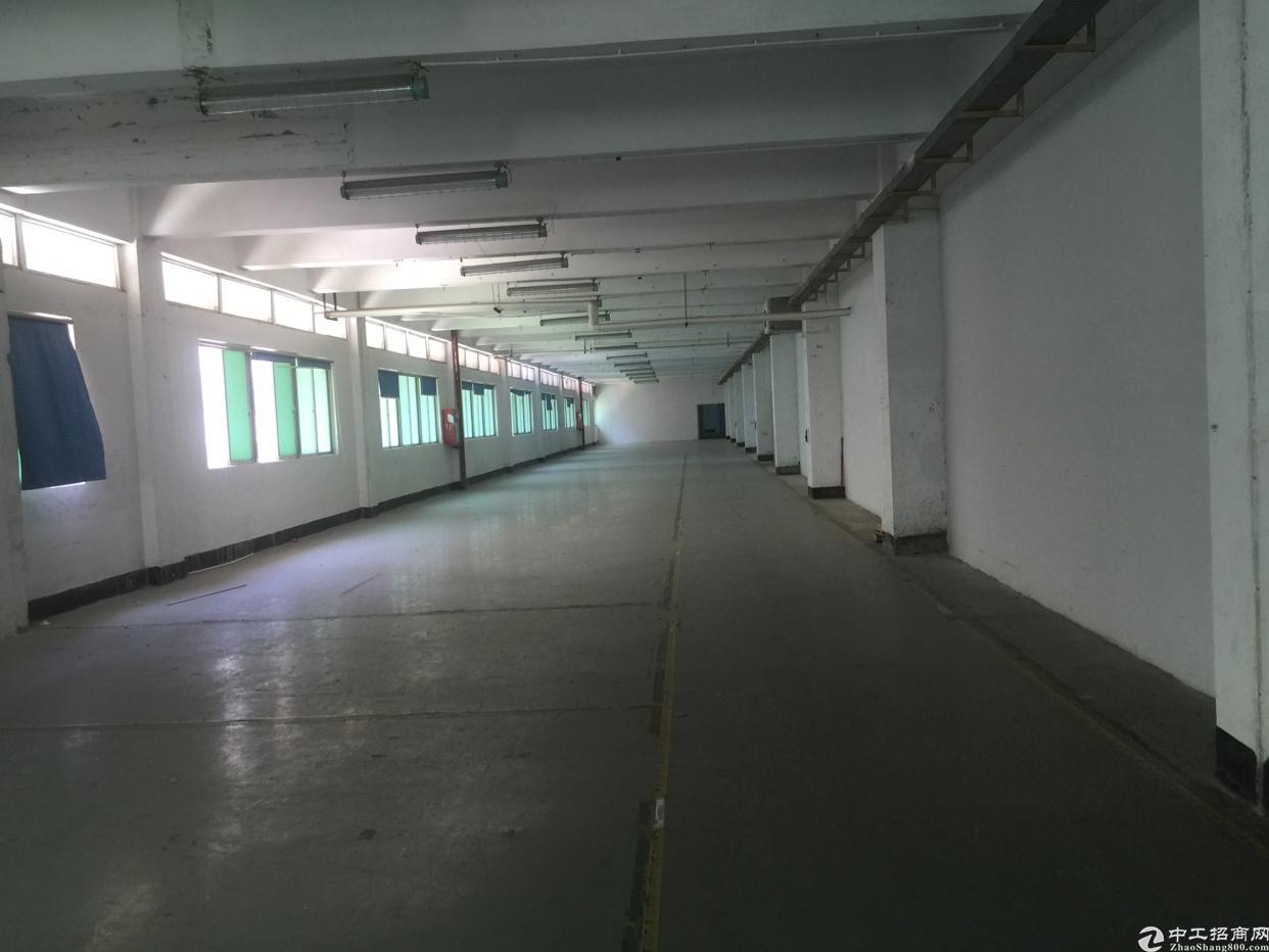 福永桥头楼上整层1600平带装修招租