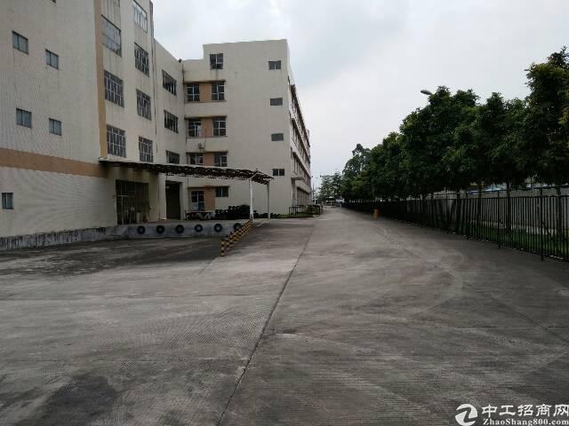 清溪镇大路边40000平方独院厂房出售-图4