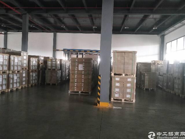 深圳大型国标物流仓13000平。