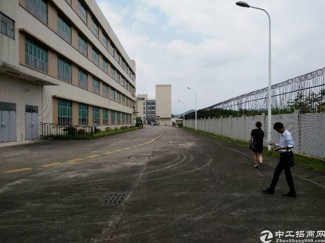 清溪镇大路边40000平方独院厂房出售-图5