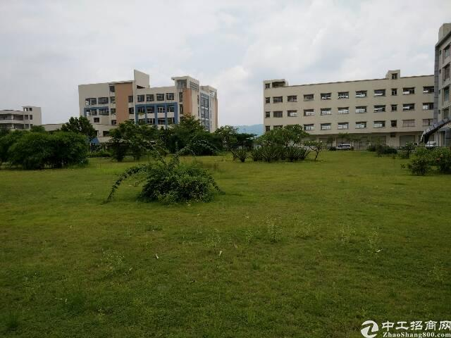清溪镇大路边40000平方独院厂房出售-图3
